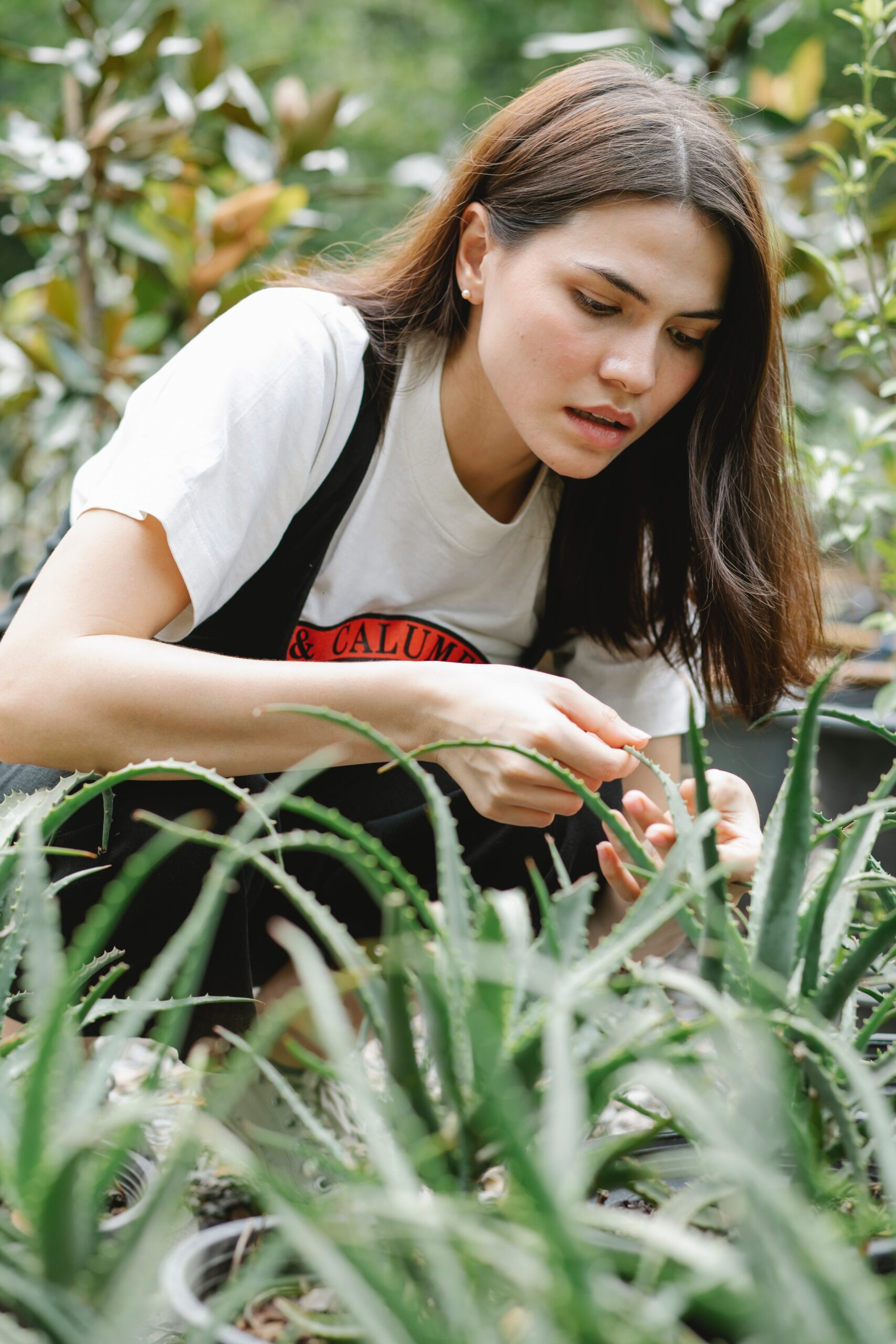 Yes, Aloe Helps Revive Sun-Damaged Skin. Here Are 4 Other Ways This Plant Can Benefit Your Skin, According To Dermatologists